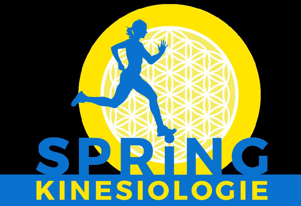 Spring Kinesiologie